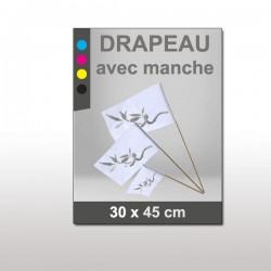 Drapeau 30x45 cm avec manche en bois